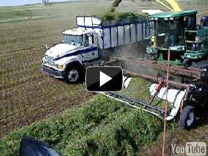 Double Windrow Pickup unit